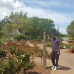Harry P Leu Gardens.jpg